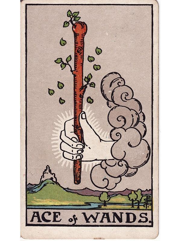 Ace of wands Rider Waite tarot