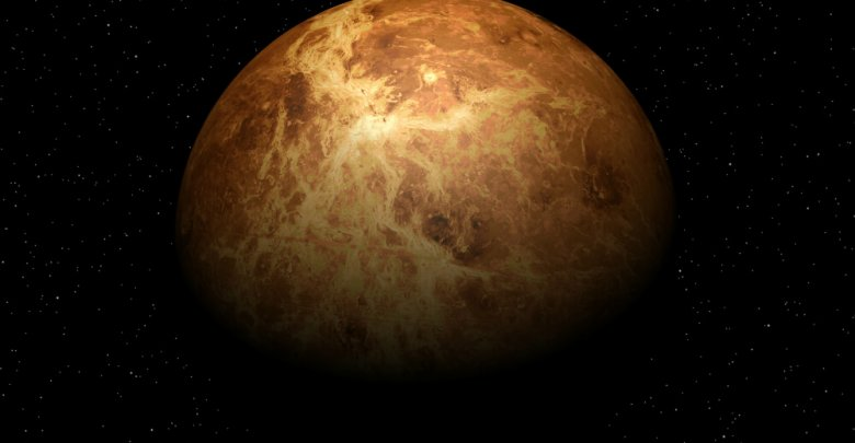 Photo of Venus & Your Love Life