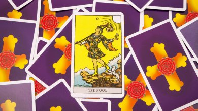 Photo of Understanding the Fool