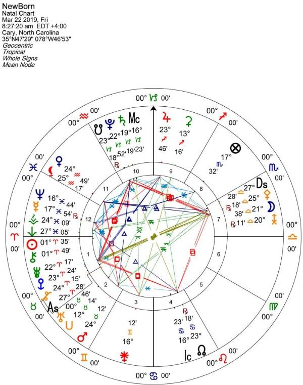 Newborn Full Chart