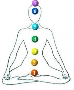 7 chakras of the human body