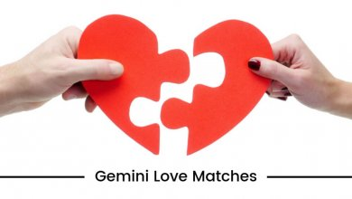 Gemini Love Matches