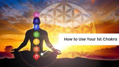 Photo of How to Use your 1st Chakra: Muladhara Chakra