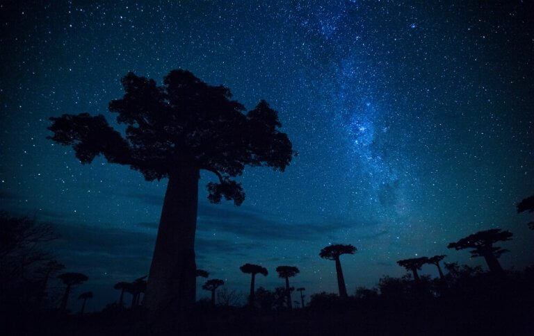 African Astrology