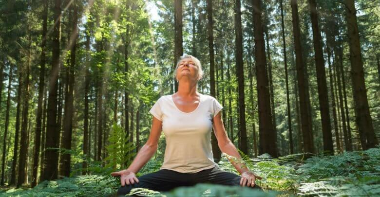 Spiritual Experience of Forest Bathing