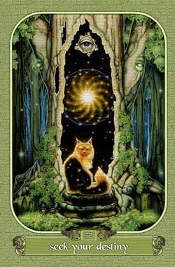 Seek Your Destiny tarot card