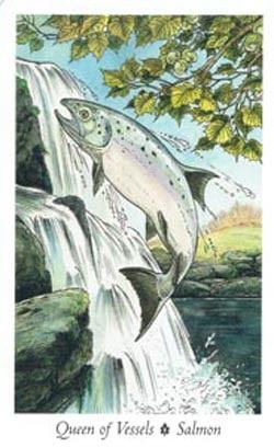 Queen of Vessels Salmon