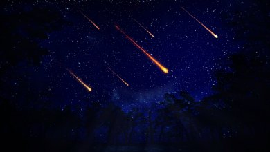 Alpha Capricornids Meteor Shower