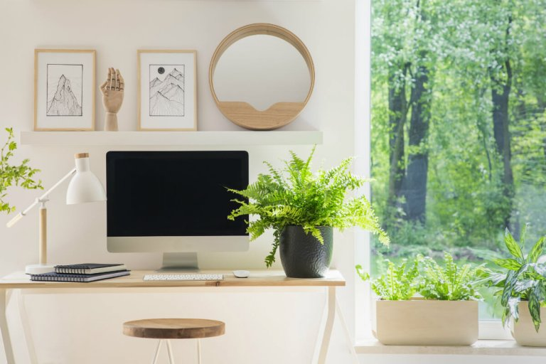 Improve Your Business with Feng Shui