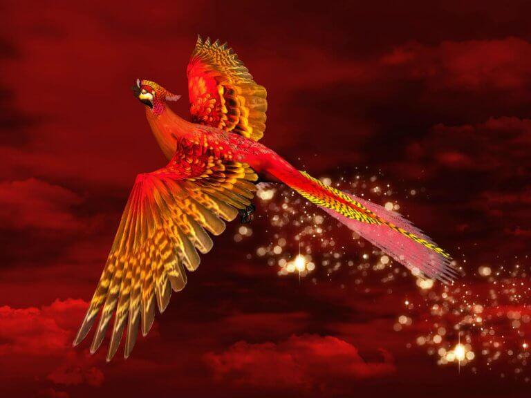 Feng Shui Red Phoenix