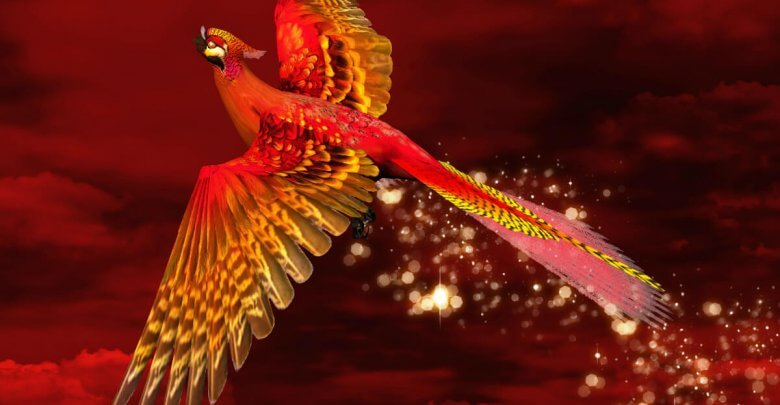 Photo of Feng Shui Red Phoenix: Guardian of the South