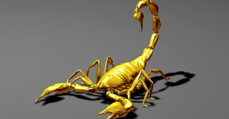 Photo of Scorpio…The Celestial Scorpion