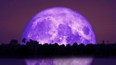 Photo of The Full Beaver Moon 2019
