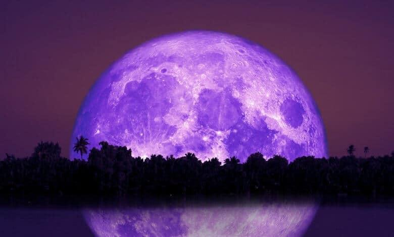 Full Beaver Moon | November 2019 | Ask Astrology Blog