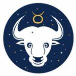 Taurus_icon