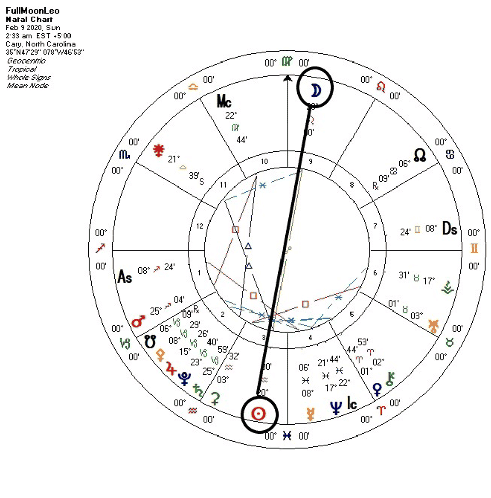 Full Moon in Leo Chart
