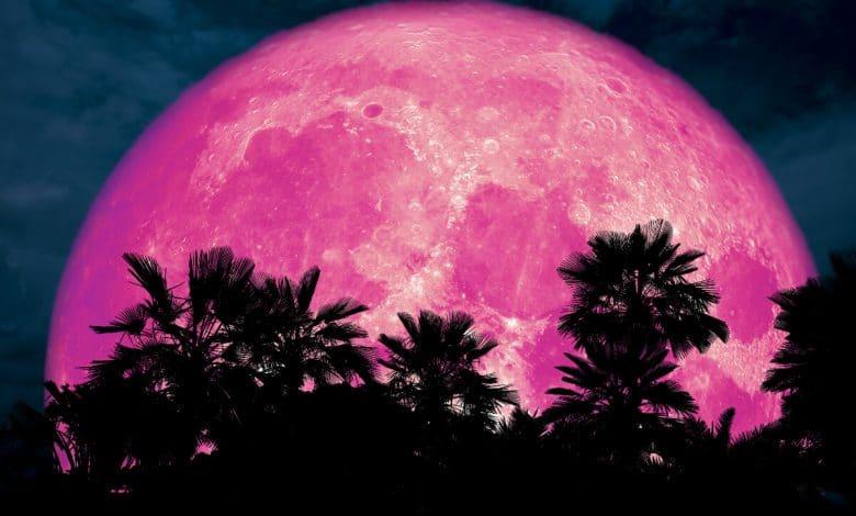 Full Pink Moon 2020