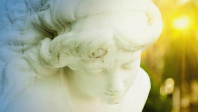 Photo of Guardian Angel Readings: Connecting with Your Guardian Angel through a Psychic
