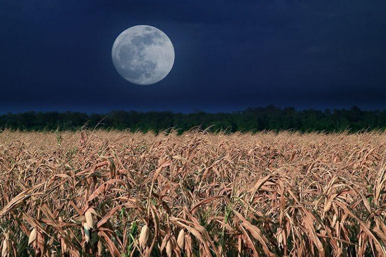 Full Corn Moon 2020