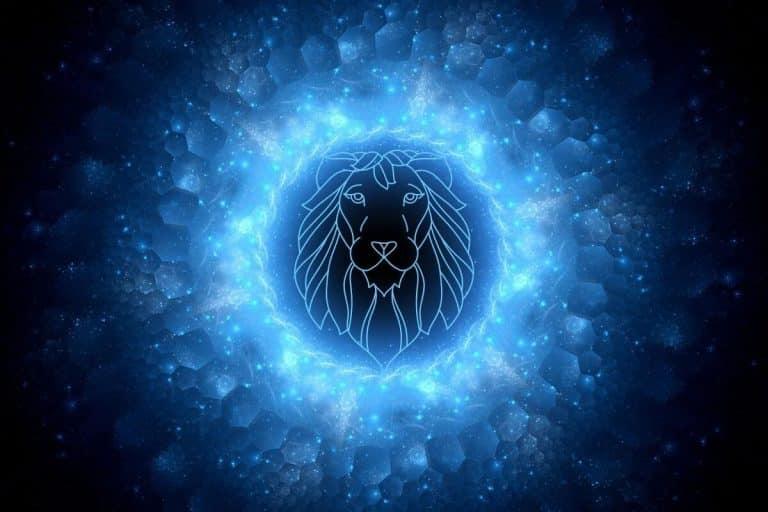 Lions Gateway Portal 2020