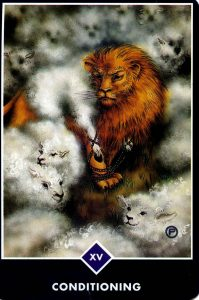 Conditioning Osho Zen Tarot