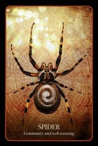 Halloween Oracle Spider