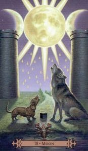 The Moon Spellcaster Tarot