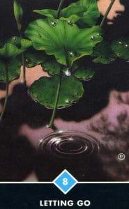 8 of Water Letting Go Osho Zen Tarot