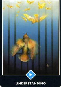 East of Water Understanding Osho Zen Tarot