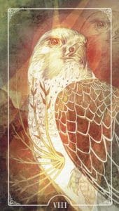 8 of Wands Ostara Tarot