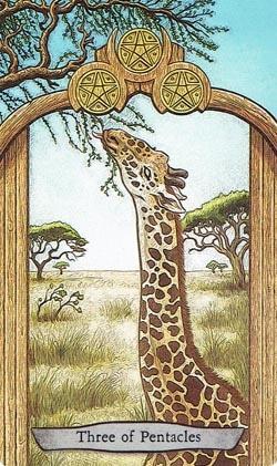 Animal Totem Tarot 3 of Pentacles Giraffe card