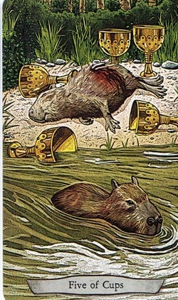 Animal Totem Tarot 5 of Cups Capybara card