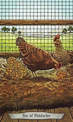Animal Totem Tarot 6 of Pentacles Chicken card