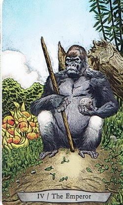 Animal Totem Tarot Emperor Gorilla card