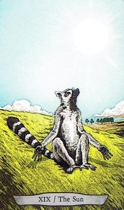 Animal Totem Tarot The Sun Lemur card