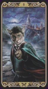 Cat tarot 8