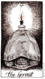 Wild Unknown tarot - The Hermit