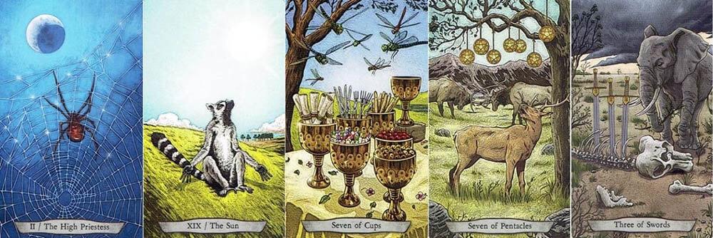 Animal Totem Tarot cards