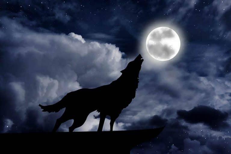 Full Wolf Moon 2021