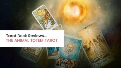 Photo of Tarot Deck Review: The Animal Totem Tarot