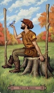 SCT Two of Wands card