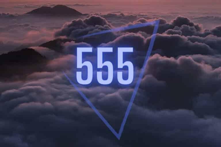 High 555 Portal Awareness