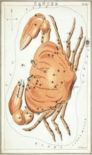 Cancer the cosmic crab