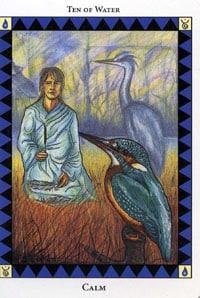 Wild Spirit Tarot Calm card