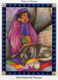 Wild Spirit Tarot Fortune Teller card