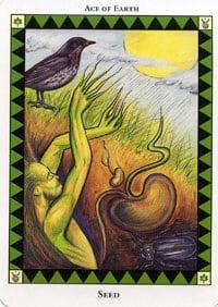 Wild Spirit Tarot Seed card