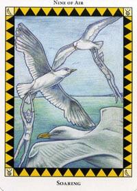 Wild Spirit Tarot Soaring card