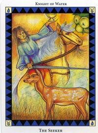 Wild Spirit Tarot The Seeker card